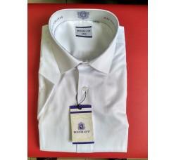 Рубашка Berlot BSDE 254